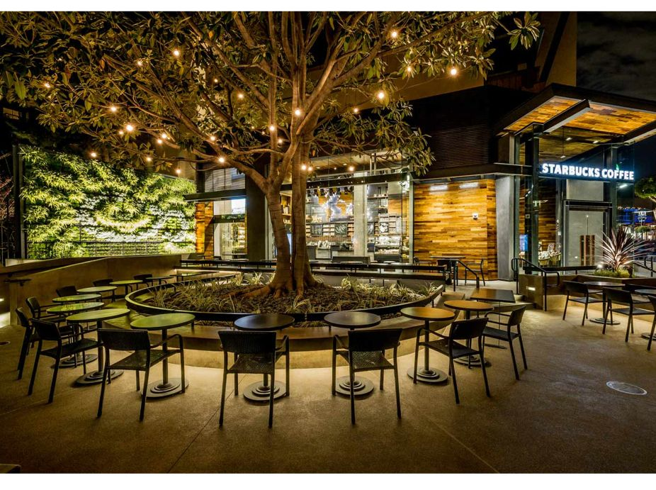Starbucks Living Wall at Downtown Disney, Anaheim Featured Image