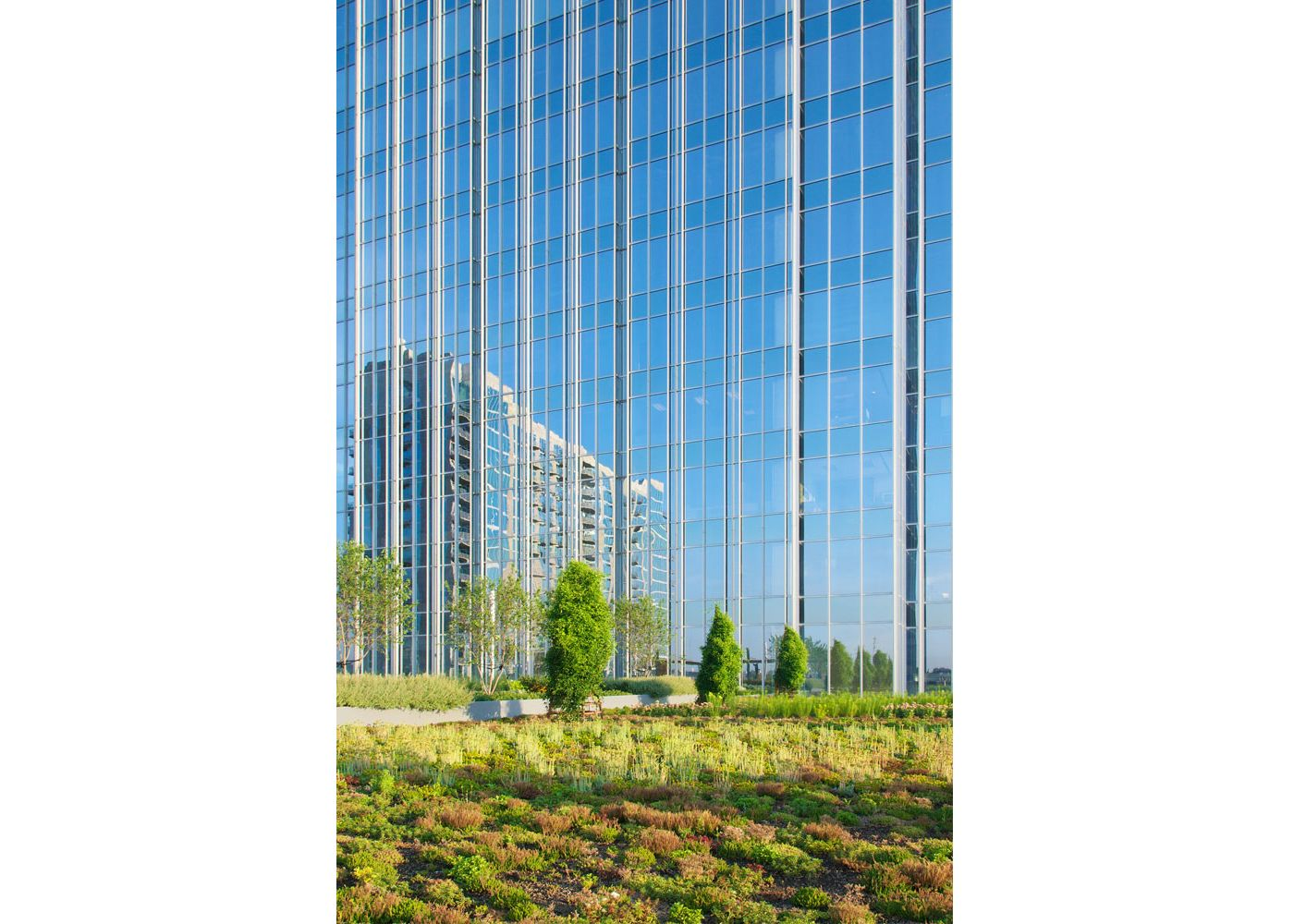 The Pinnacle at Symphony Place - Greenroofs com