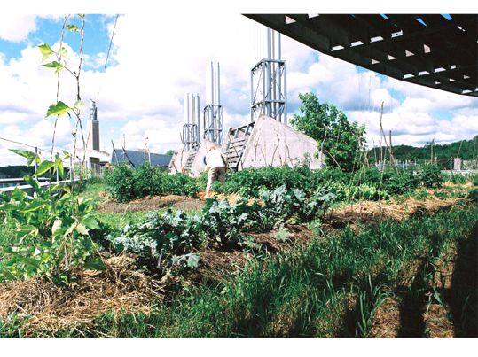 Trent University Environmental And Resource Sciences Vegetable