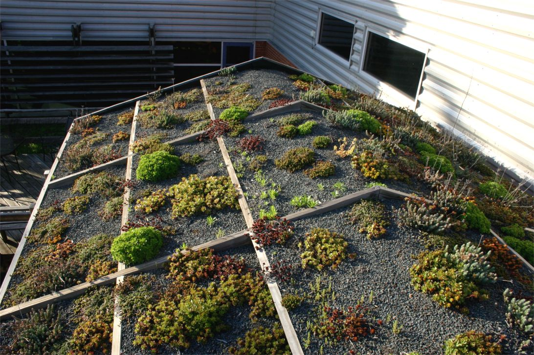 University Of Tennessee Garden Shed Greenroofs Com
