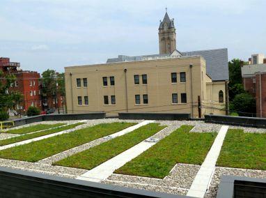 Virginia Commonwealth University (VCU) Featured Image