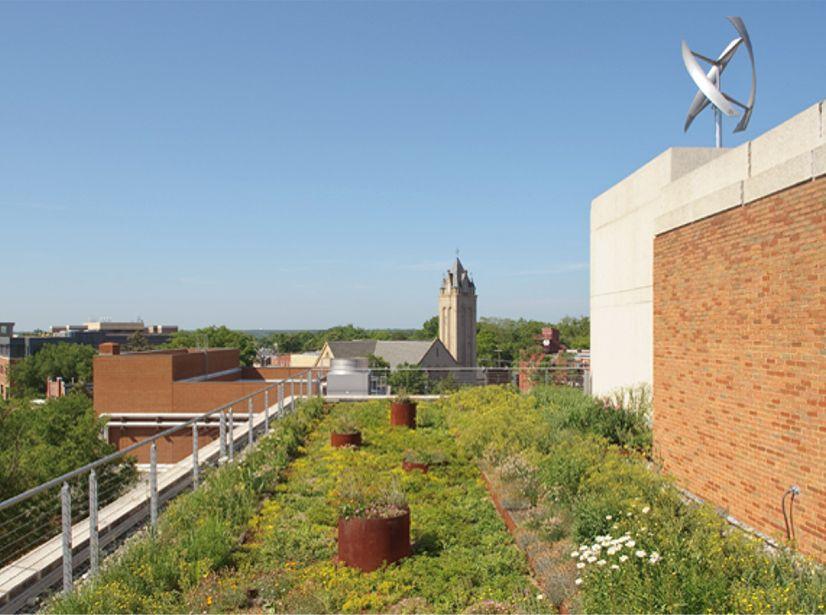 virginia commonwealth university vcu pollak building greenroofs com
