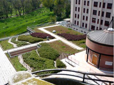 Vicenza (San Bortolo) Hospital Featured Image
