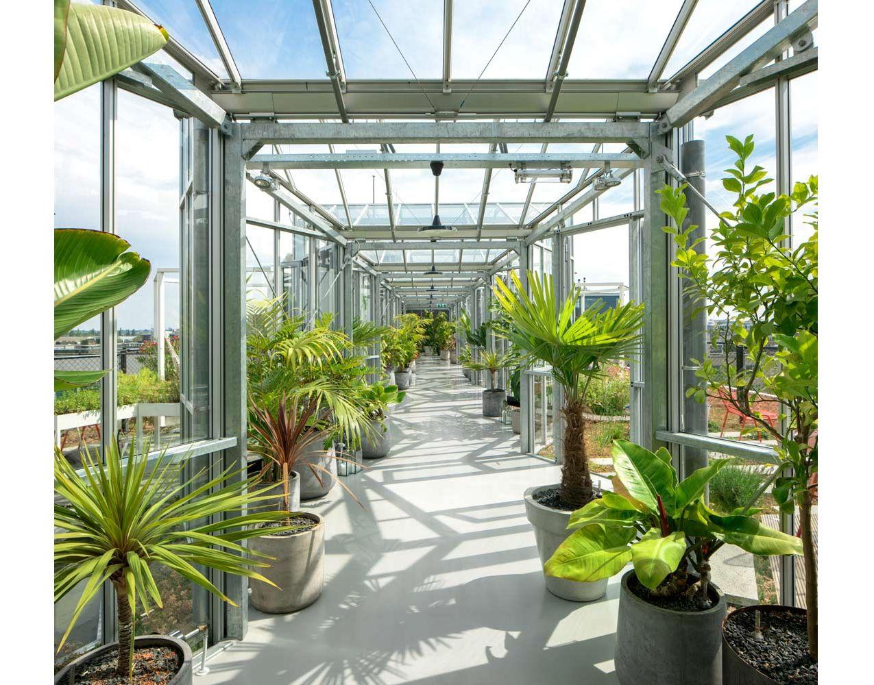 Zoku (Metropoolgebouw - Metro Pool Building) Roof Garden ...
