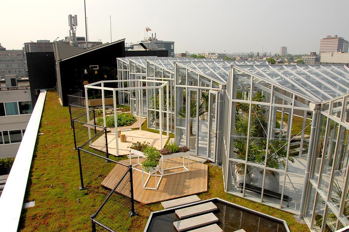 Zoku Metropoolgebouw Metro Pool Building Roof Garden