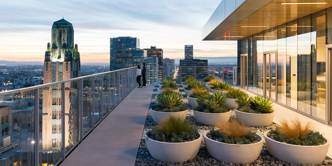 Is The Rooftop Architecture Renaissance A Fad Or A Fixture