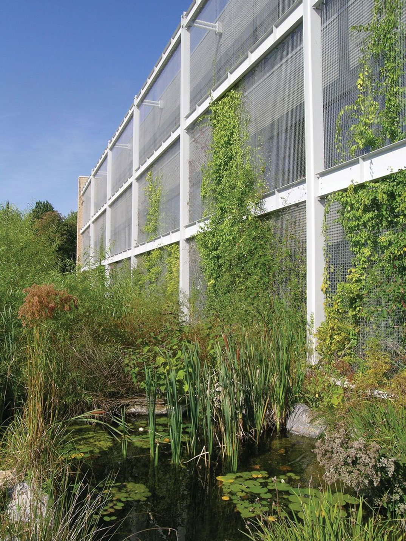 National Wildlife Federation HQ Green Façade