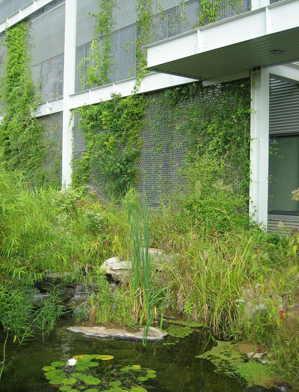 National Wildlife Federation HQ Green Façade