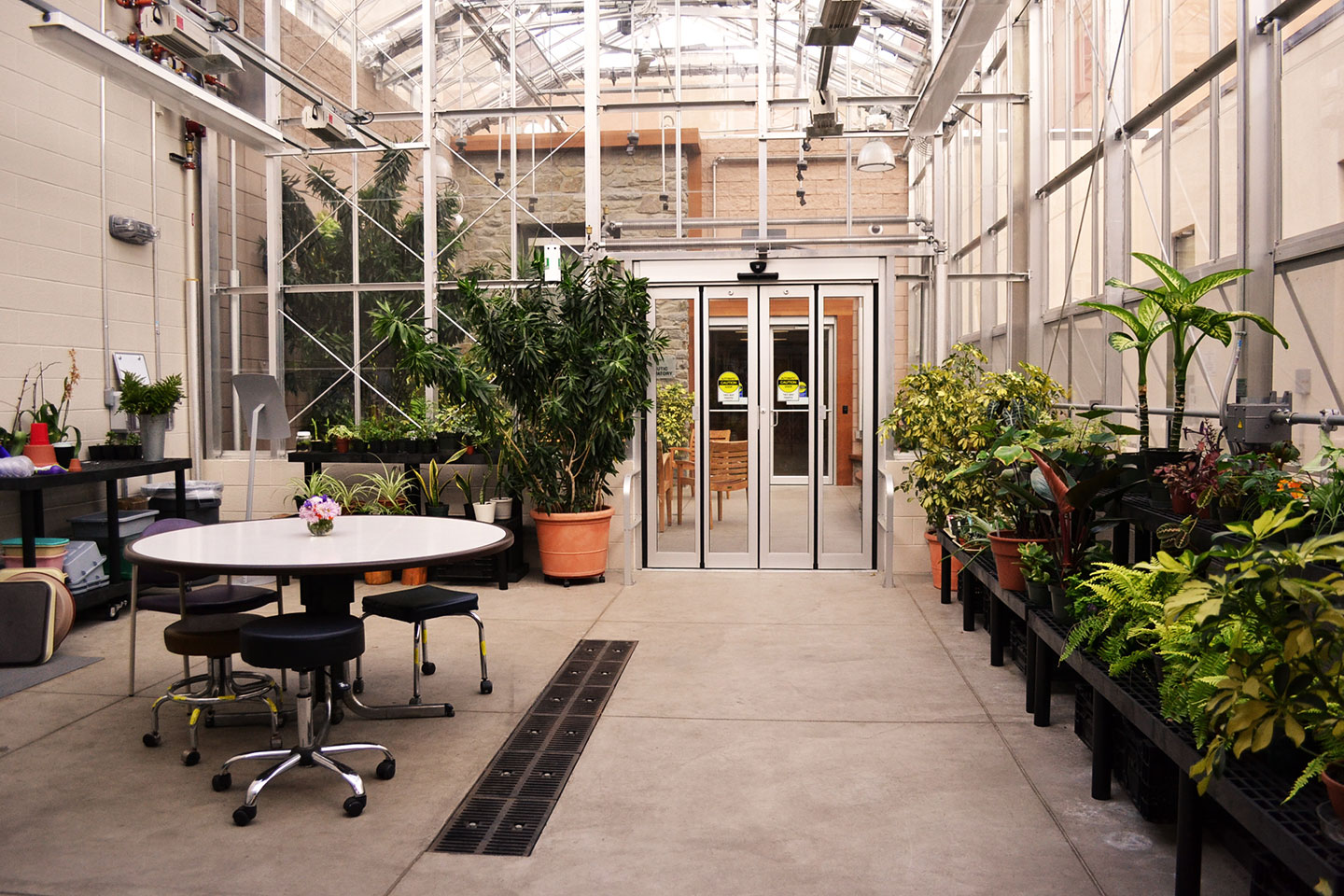 Therapeutic Conservatory