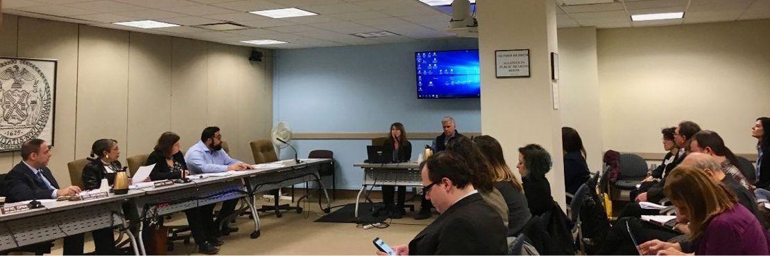 NYC City Council public hearing