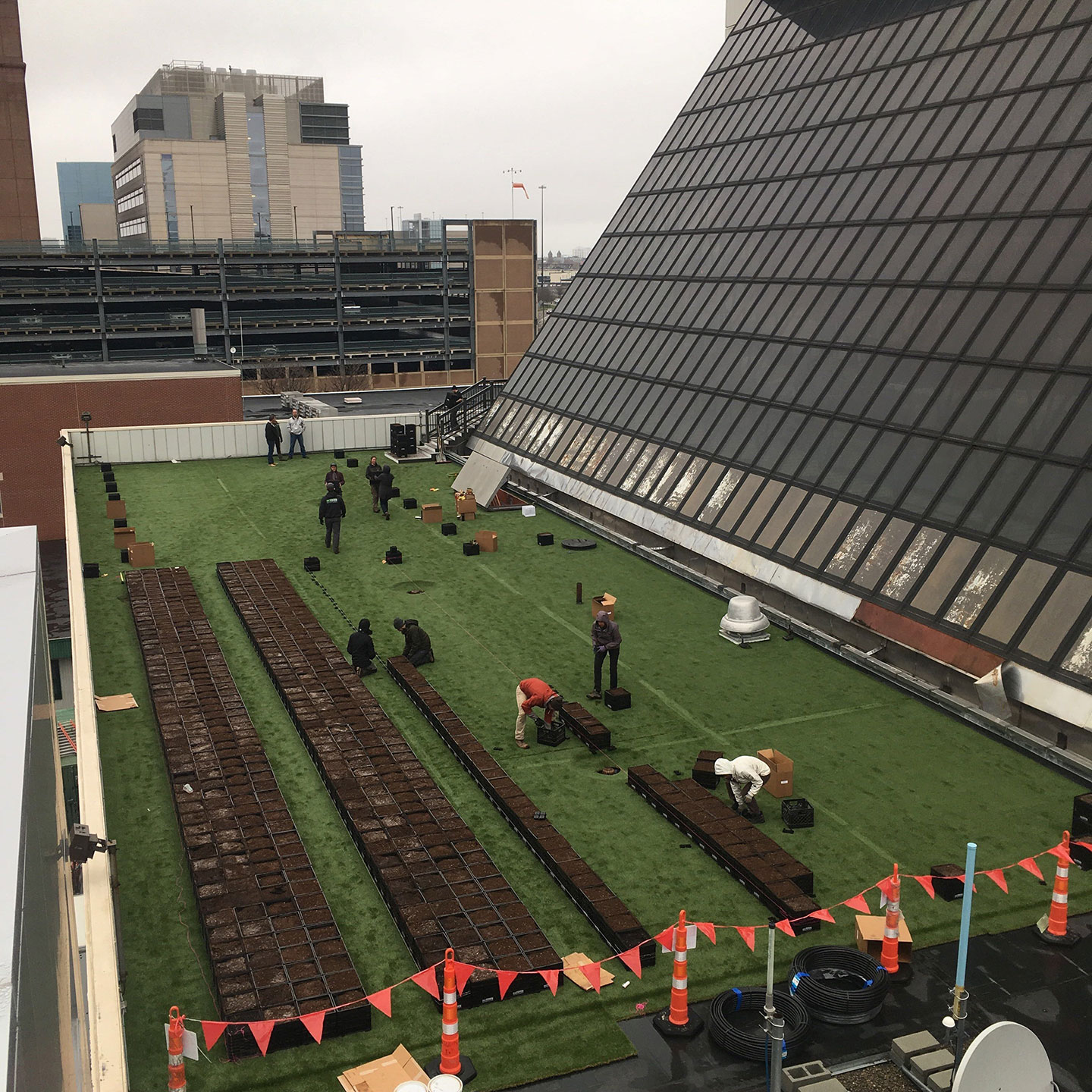 Image result for Hospital Rooftop Garden Provides 7000 Pounds of Organic Veggies a Year for Patients