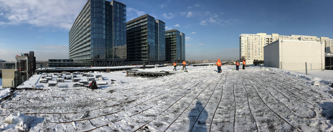 Sky View Parc Green Roof