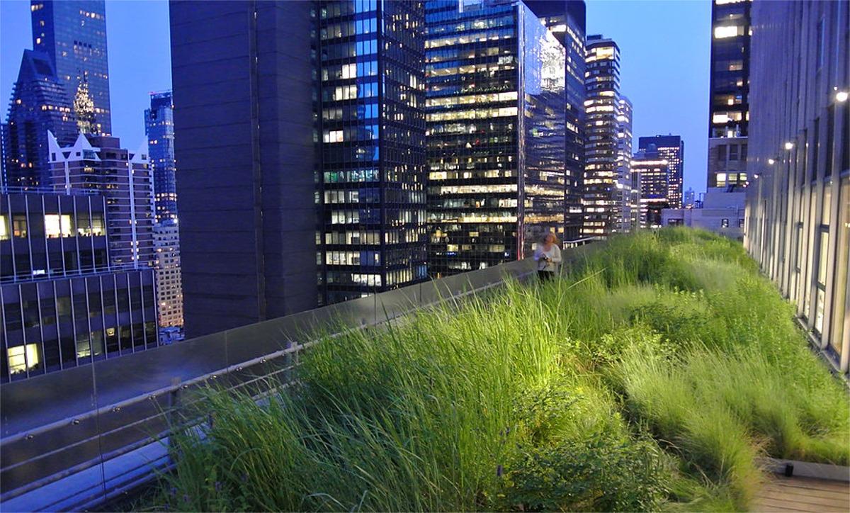 New York Green Roofs: Urban Landscape Installation Crew ...