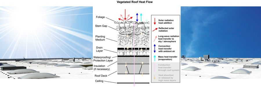 Green Roof Energy Series Part 1: The Essentials – Heat