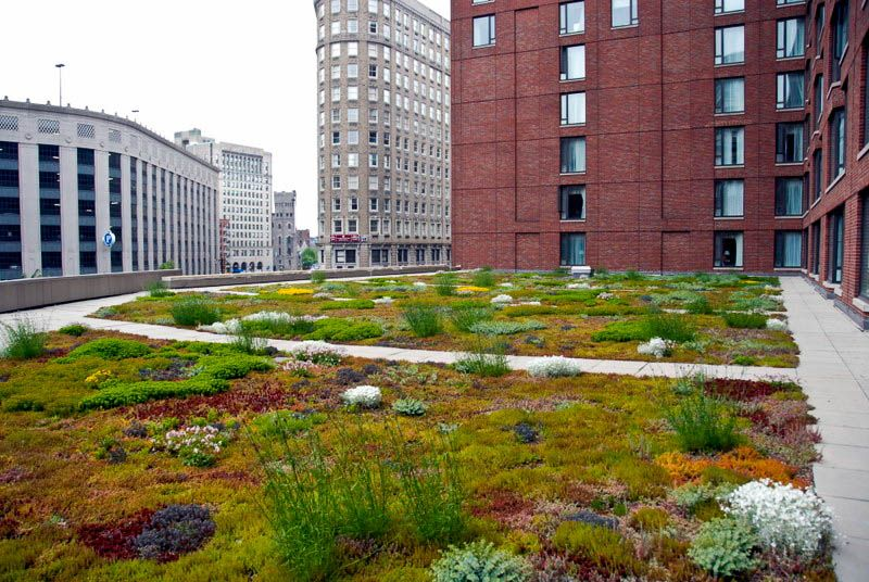Green Roof Energy Series Part 2