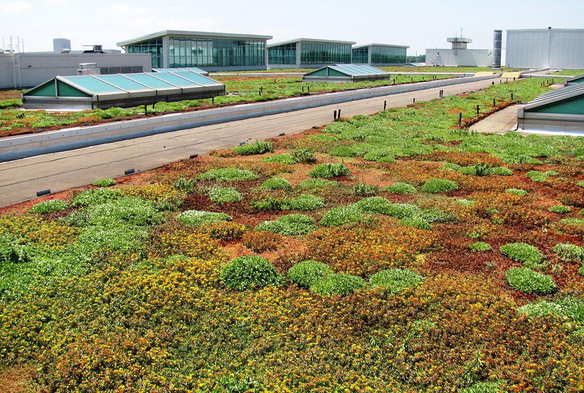Green Roof Energy SeriesPart 7