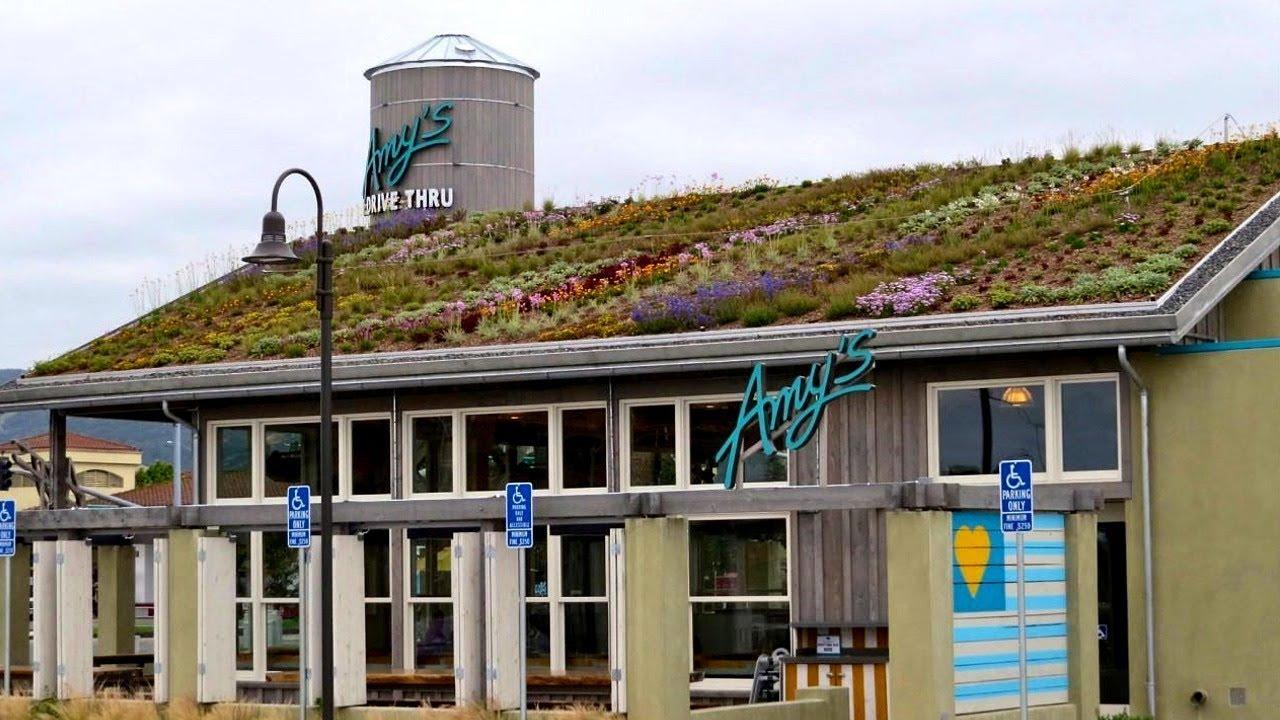 AMY'S Drive-Thru Restaurant Rohnert Park