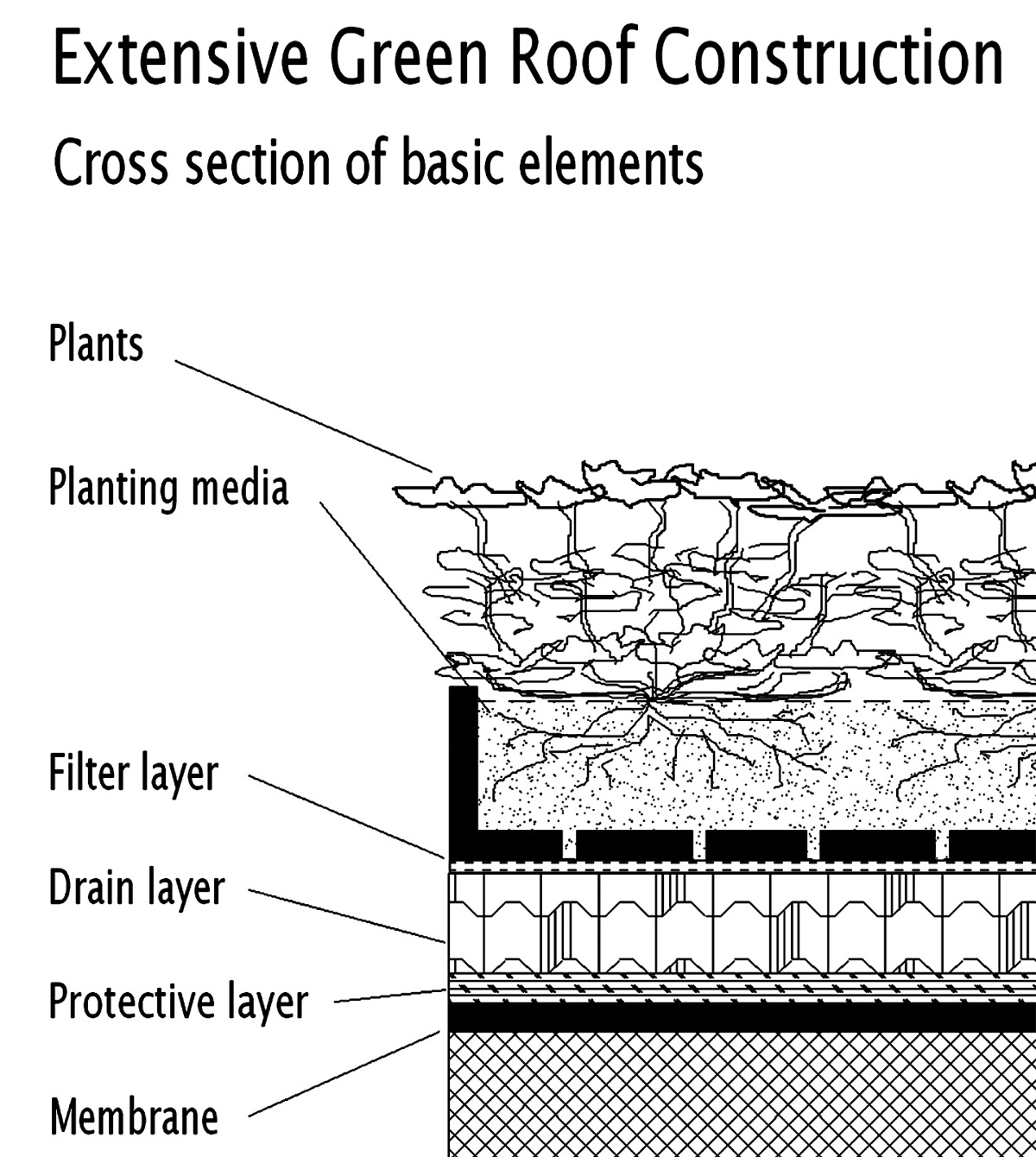 Energy and Green Roofs