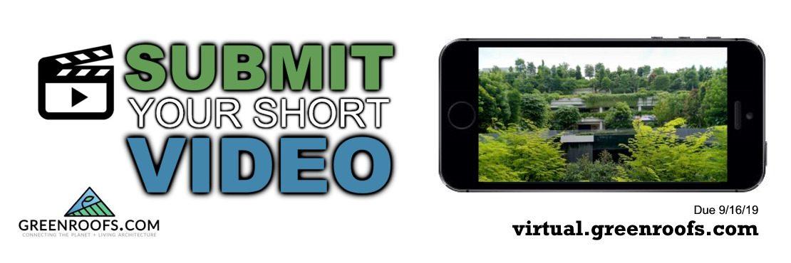 Virtual Summit 2019 Call for Short Videos