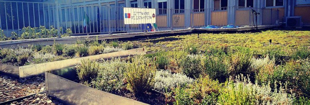 Liceo Scientifico Keplero Experimental Green Roof