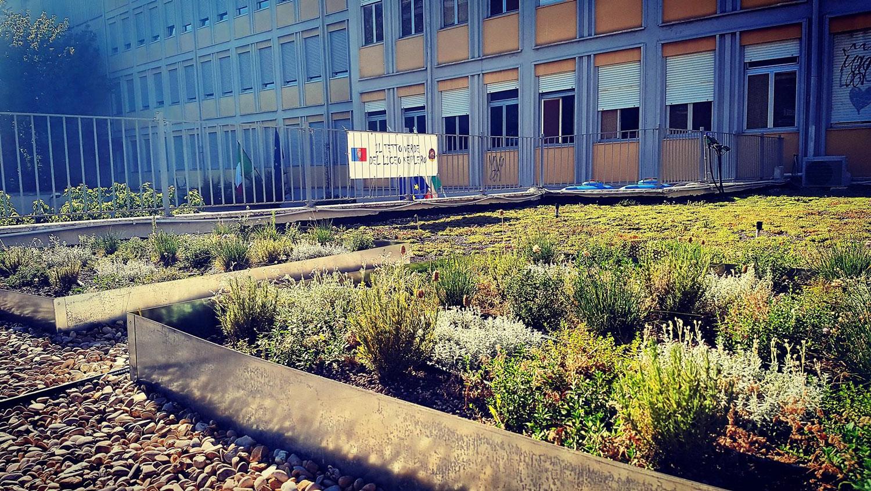 Keplero Experimental Green Roof (Liceo Scientifico Keplero Tetto Verde Sperimentale) Featured Image