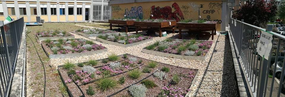 Liceo Scientifico Keplero Experimental Green Roof
