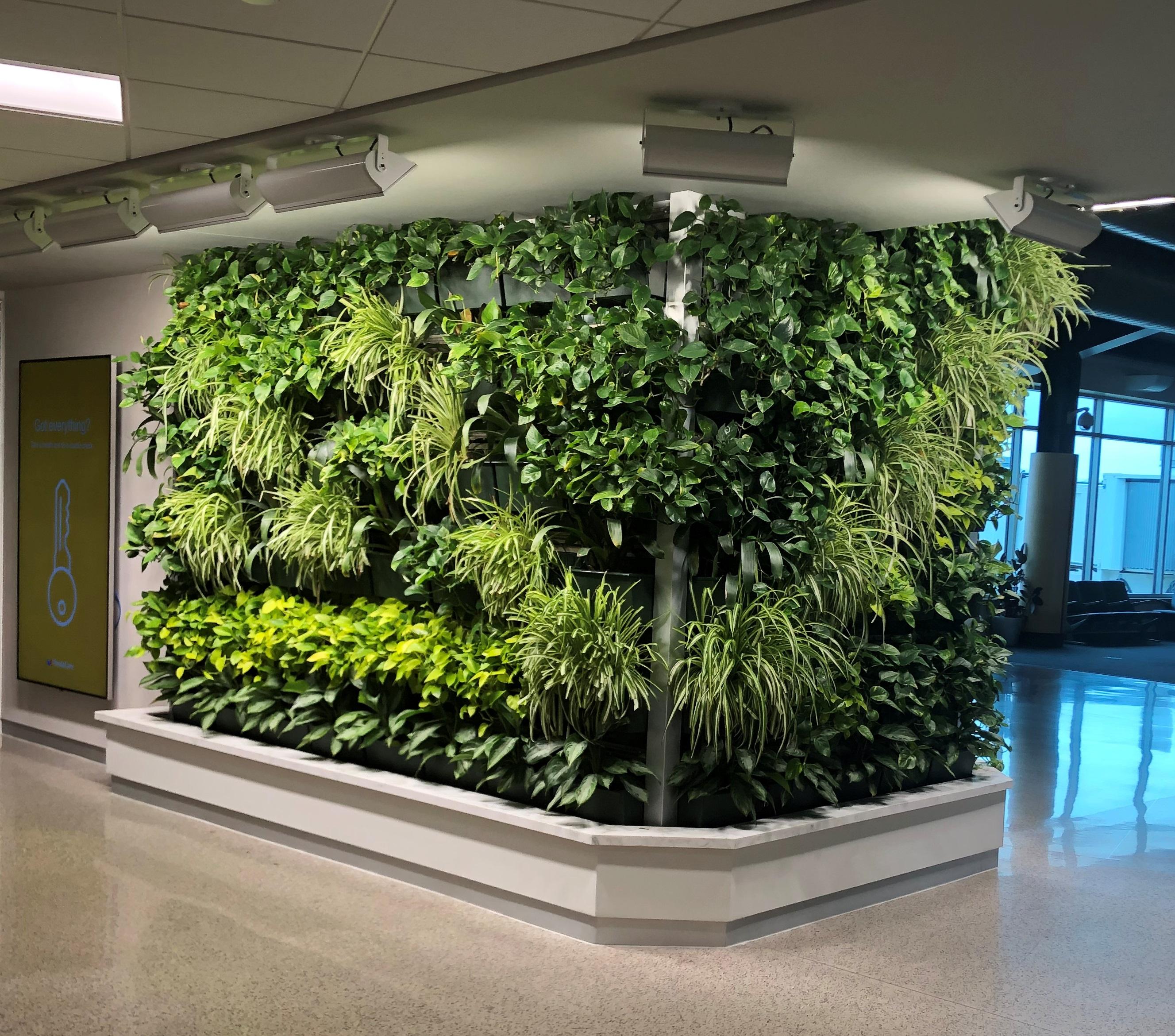 Indoor Garden Interior Living Walls