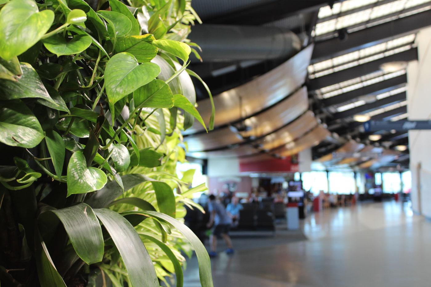 ATW Living Wall