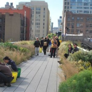 A Comparison of the 3 Phases of the High Line Part 8 - Maintenance & Irrigation