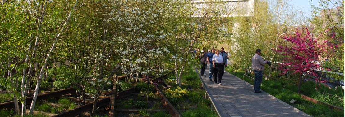 A Comparison of the 3 Phases of the High Line Part 11 - Restrictions and User Activities & Sustainability