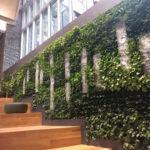 USG BSE Living Wall