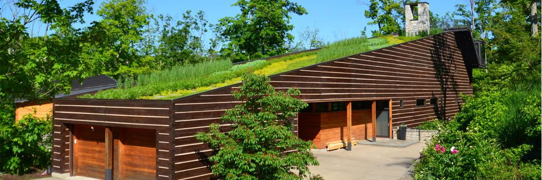 IndianHillHouseGreenRoofRehab GreenCityResources featured.'