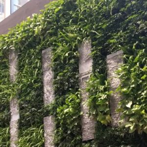 USG Living Wall