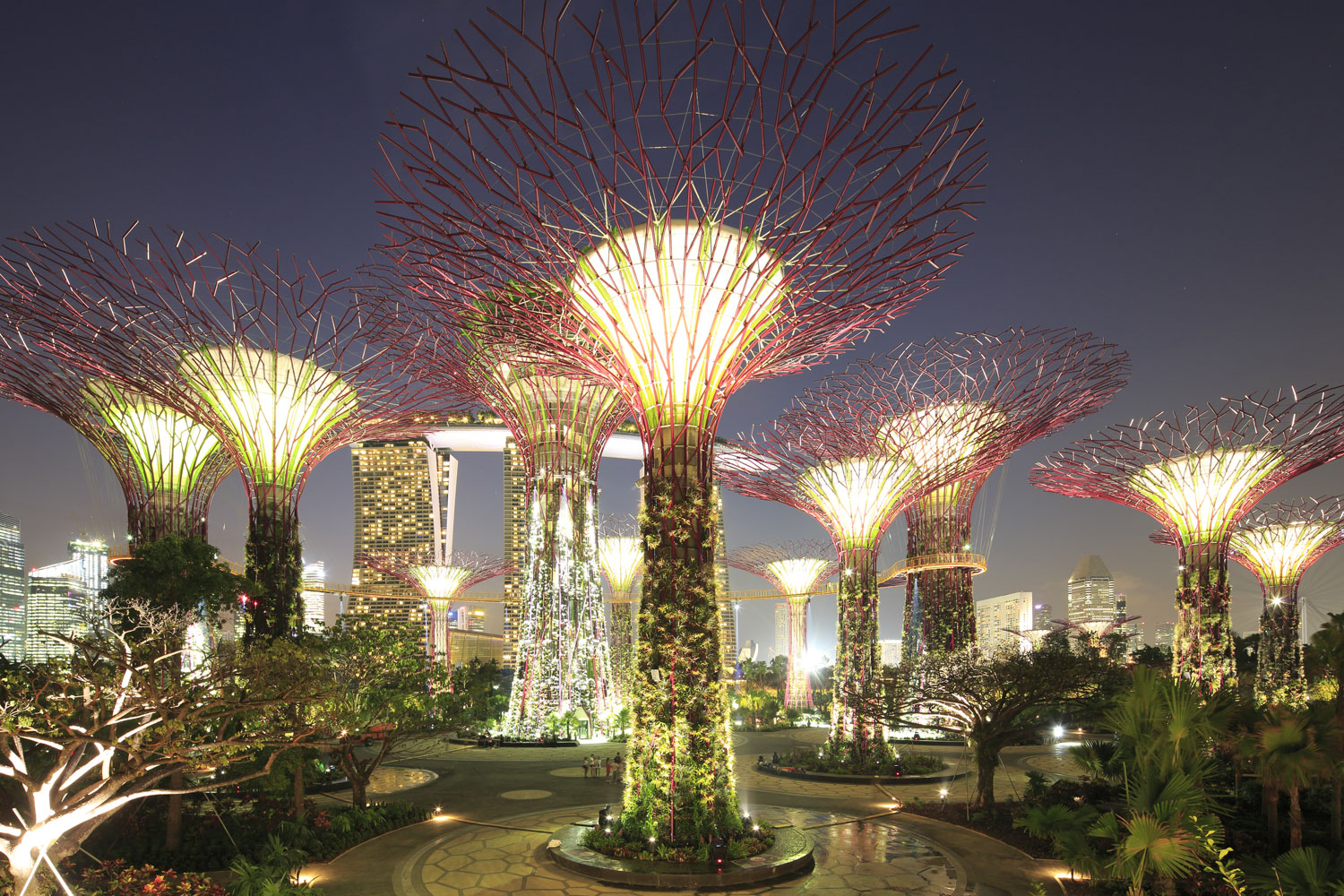 Gardens by the Bay, Supertrees Featured Image