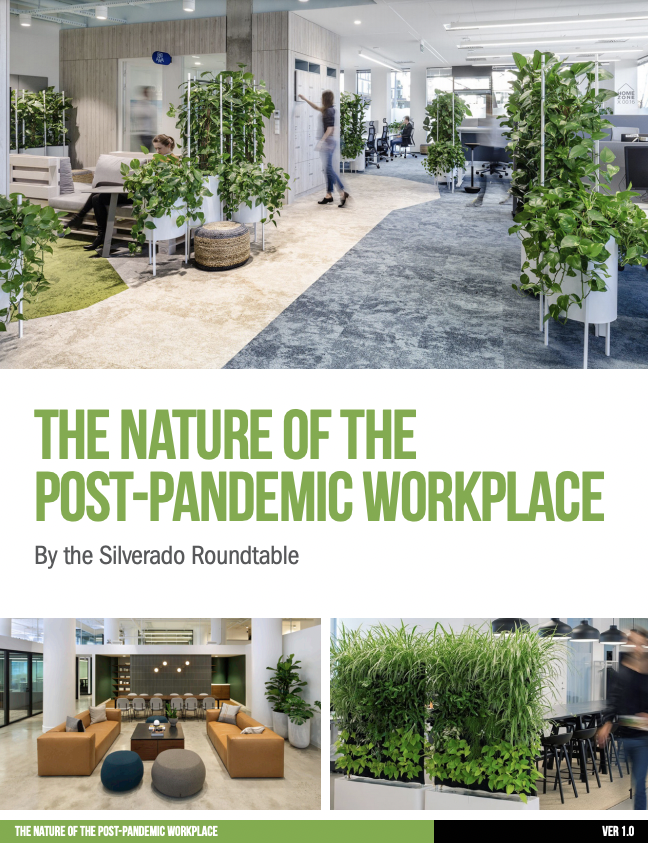 The Nature of the Post-Pandemic Workplace