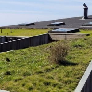 Sea Ranch Building and Maintenance