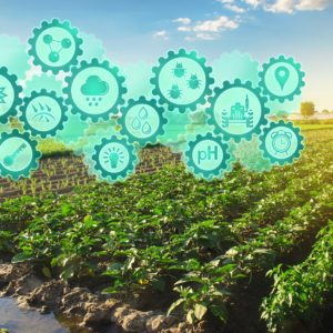 High-Tech Farming